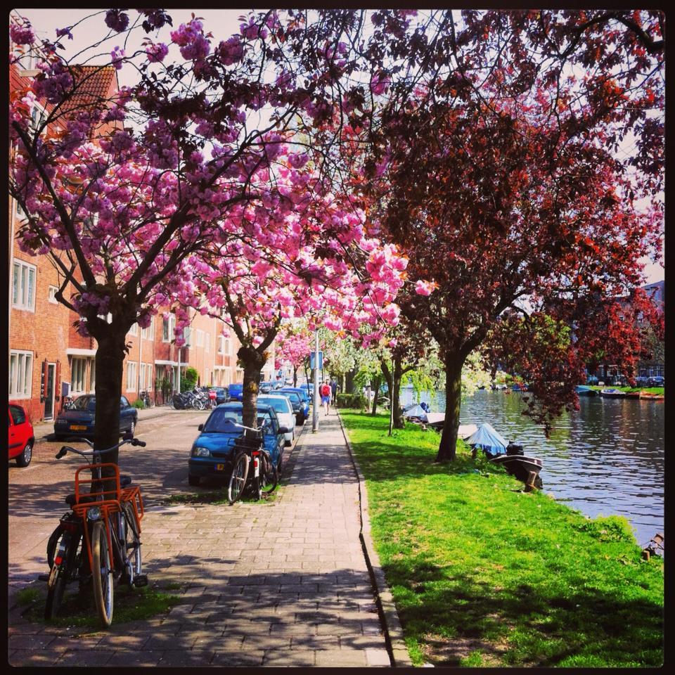 Primavera em Amsterdam