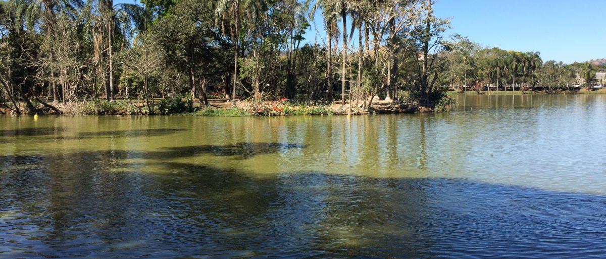 Lindo Parques das águas